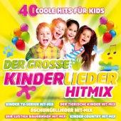 Play & Download Der große Kinderlieder Hitmix - 40 coole Hits für Kids by Various Artists | Napster