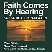 Konkomba Likpakpaaln New Testament (Dramatized) by The Bible