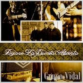 Play & Download Dejare la Puerta Abierta by Grupo Vidal | Napster
