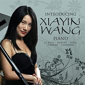 Introducing Xiayin Wang by Xiayin Wang