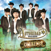 Play & Download Corridos by La Autoridad De La Sierra | Napster