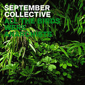 Play & Download All The Birds Were Anarchists by September Collective | Napster