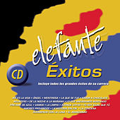 Elefante Exitos by Elefante