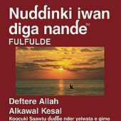 Play & Download Fulfulde Adamawa Au Cameroun Nouveau Testament (Dramatisédramatisé) - Fulfulde Adamawa for Cameroon Bible by The Bible | Napster