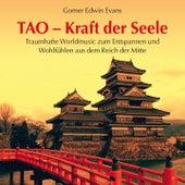 Play & Download TAO - Kraft der Seele: Wohlfühlmusik aus dem Reich der Mitte by Gomer Edwin Evans | Napster