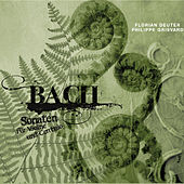 Play & Download Bach: Sonaten für Violine und Cembalo by Various Artists | Napster