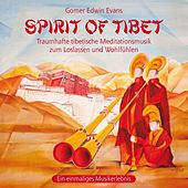 Play & Download Spirit of Tibet: Wonderful Music For Meditation by Gomer Edwin Evans | Napster