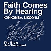 Play & Download Konkomba Likoonli New Testament (Non-Dramatized) by The Bible | Napster