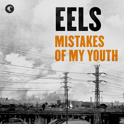 Mistakes Of My Youth von Eels