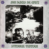 Strange Terrain by Jan Dukes de Grey