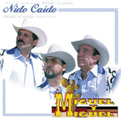 Play & Download Nido Caido by Miguel Y Miguel | Napster