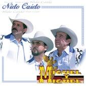 Nido Caido by Miguel Y Miguel