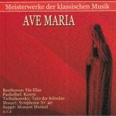 Play & Download Meisterwerke der klassischen Musik: Ave Maria by Various Artists | Napster