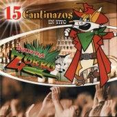 Play & Download En Vivo by Banda Zorro | Napster