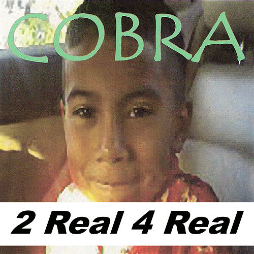 2 Real 4 Real by Cobra