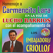 Play & Download Homenaje a Carmencita Lara by Lucho Barrios | Napster