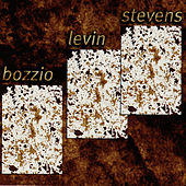 Situation Dangerous by Terry Bozzio/Levin/Stevens...