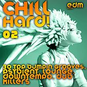 Play & Download Chill Hard!, Vol. 2 (30 Top Bumpin Grooves, Psybient, Lounge, Downtempo, Dub Killers) by Various Artists | Napster
