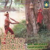 Mis Mejores Canciones by Lalo El Gallo Elizalde
