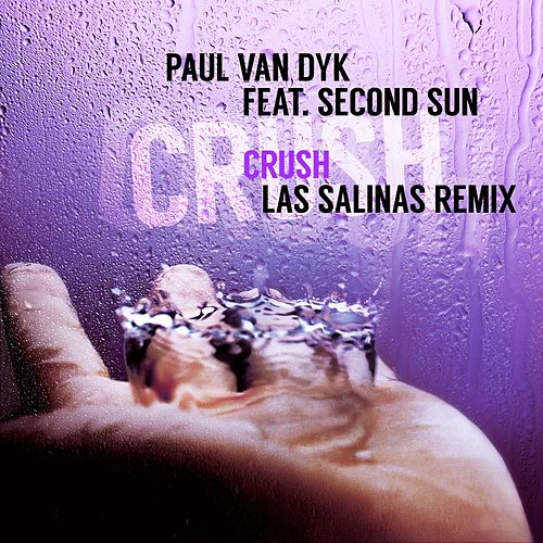 Crush (Las Salinas Remix) by Paul Van Dyk