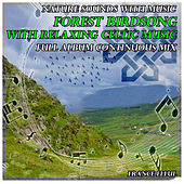 Nature Sounds with Music: Forest Birdsong with Relaxing Celtic Music by France Ellul