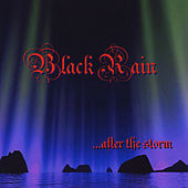 After the Storm by Black Rain