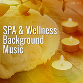 Play & Download Spa & Wellness Background Music by Various Artists | Napster