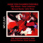 Play & Download Music for Chamber Ensemble by Richard Pittman | Napster