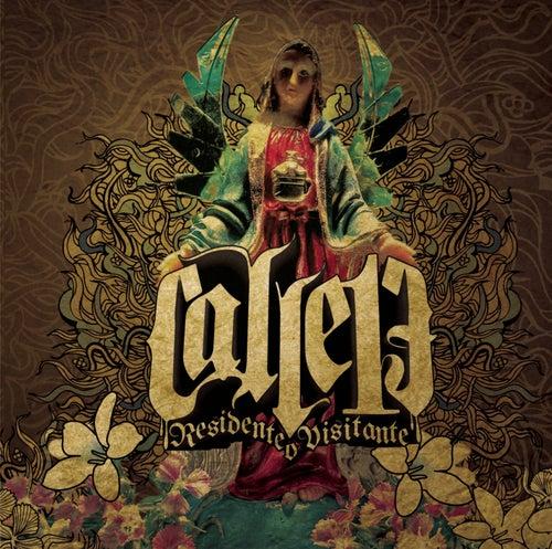 Residente o Visitante by Calle 13