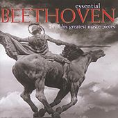 Play & Download Essential Beethoven by Various Artists | Napster