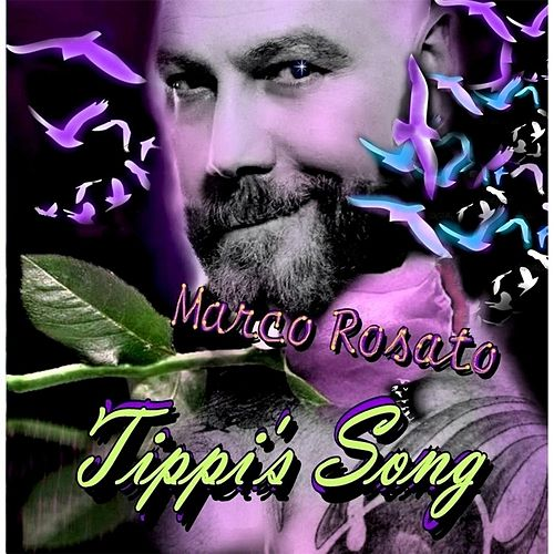 Play & Download Tippi's Song by Marco Rosato | Napster