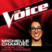 I Knew You Were Trouble by Michelle Chamuel
