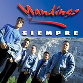 Play & Download Siempre by Mandingo | Napster