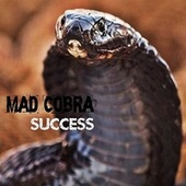 Play & Download Success by Mad Cobra | Napster