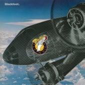 Flyin' High by Blackfoot