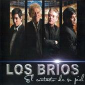 Play & Download El Contacto De Su Piel by Los Brios | Napster