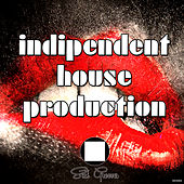 Indipendent House Production by Various Artists