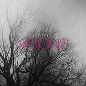 Play & Download Visions by Pablo Bolivar | Napster