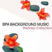 Spa Background Music Wellness Collection (Background Music for Spa) by Spa Music Masters