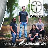 Play & Download We Will Fly by Sons of Life | Napster