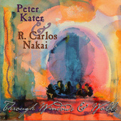 Play & Download Through Windows & Walls by Peter Kater | Napster