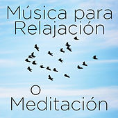 Play & Download Musica para Relajación o Meditación: 30 Canciones by Richard Clayderman | Napster