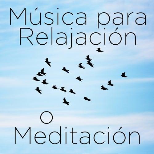 Play & Download Musica para Relajación o Meditación: 30 Canciones by Richard Clayderman | Napster