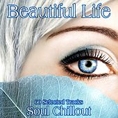 Play & Download Beautiful Life by Various Artists | Napster