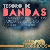 Play & Download Tesoro de Bandas: Banda el Recodo, Banda los Recoditos, Banda el Limon by Various Artists | Napster