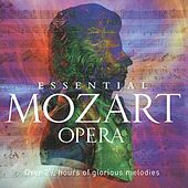 Play & Download Essential Mozart Opera by Various Artists | Napster
