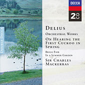Delius: Orchestral Works by Orchestra of the Welsh National Opera