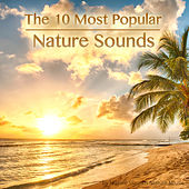 Play & Download The 10 Most Popular Nature Sounds by Nature Sounds Nature Music | Napster