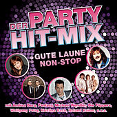 Der Party Hit Mix - 14 Gute-Laune Hits von Various Artists