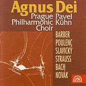 Play & Download Barber, Poulenc, Slavický, Novák, Strauss, Bach: Agnus Dei by Various Artists | Napster